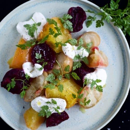Salat med gule beder og friskost