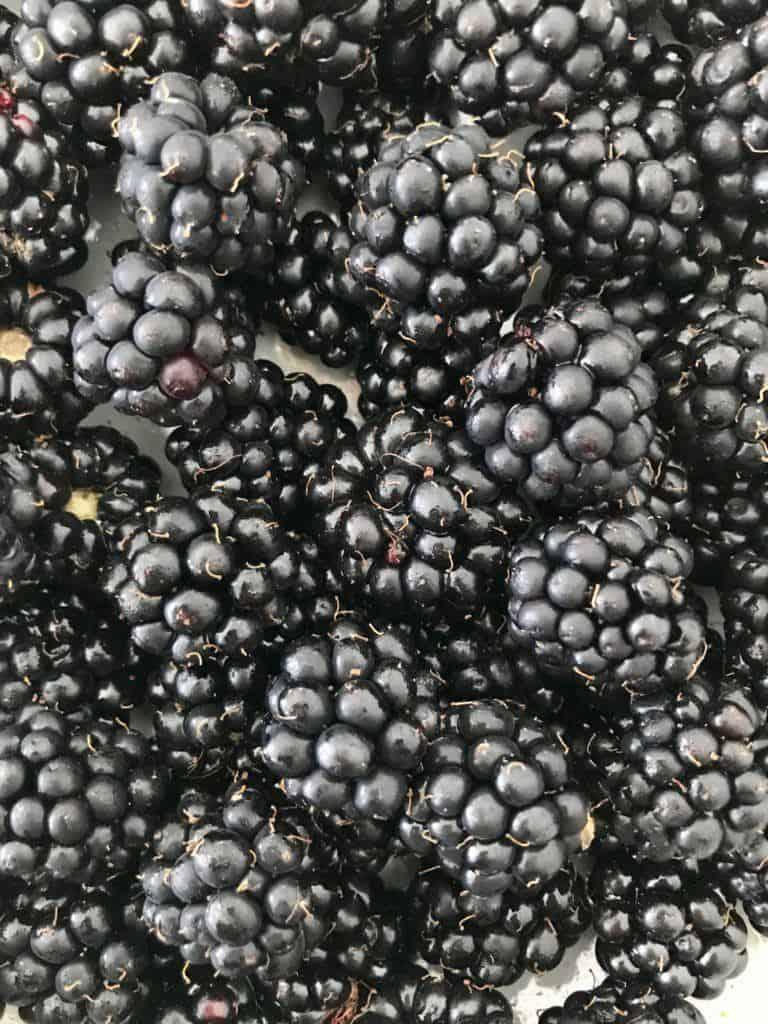 Bær Samsø